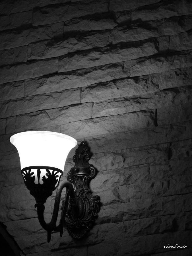 Textures Photograph by Vinod Nair