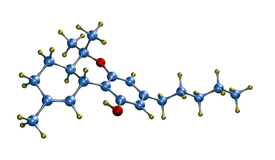 Thc Cannabis Drug Molecule Photograph by Dr Mark J. Winter