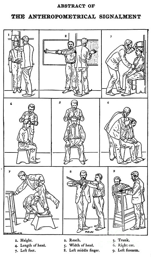 Science Photograph - The Anthropometrical Signalment, 1896 by Science Source
