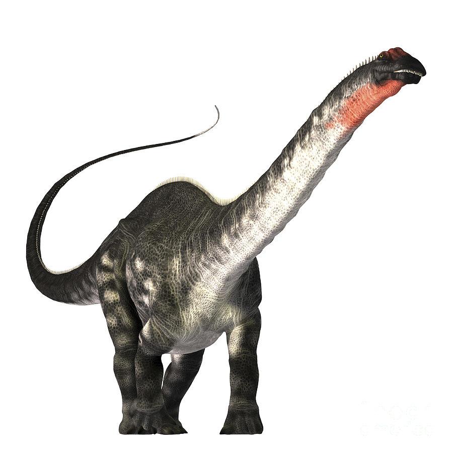Apatosaurus Digital Art - The Apatosaurus Dinosaur by Corey Ford