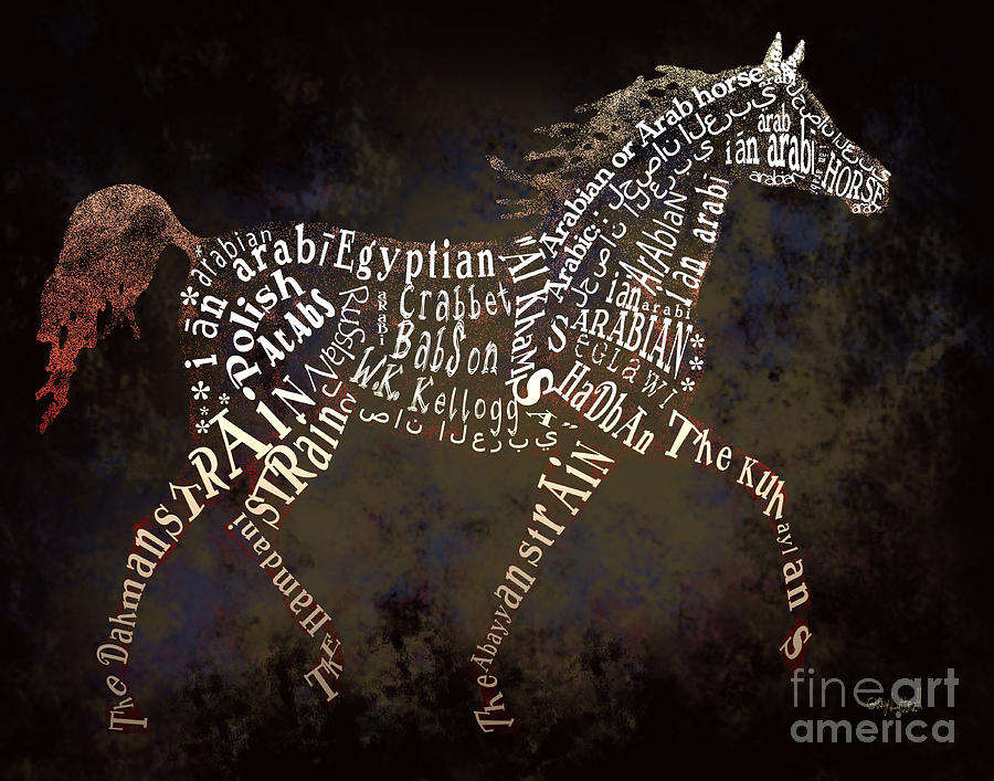 Horses Mixed Media - The Arabian Horse In Typography by Ginny Luttrell