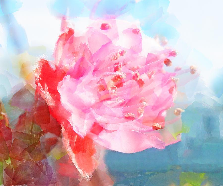 Blossom Photograph - The Aura Of A Peach Blossom by Steve Taylor