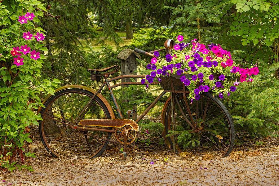 Garden Design Photograph - The Bike Stops Here - Niagara by Marilyn Cornwell