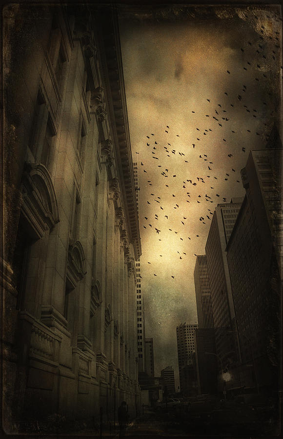 Urban Photograph - The Birds by Peter Labrosse