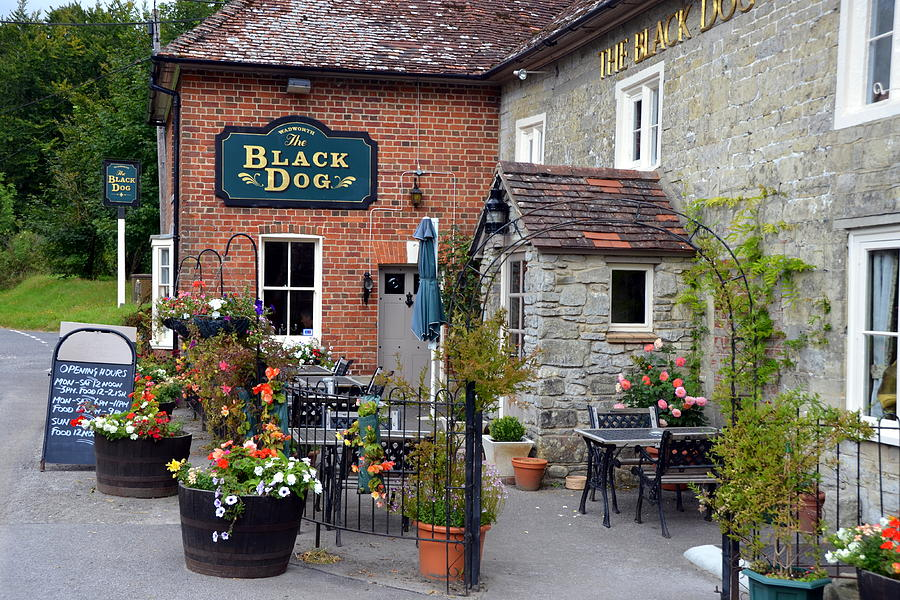 England Photograph - The Black Dog Pub by Carla Parris