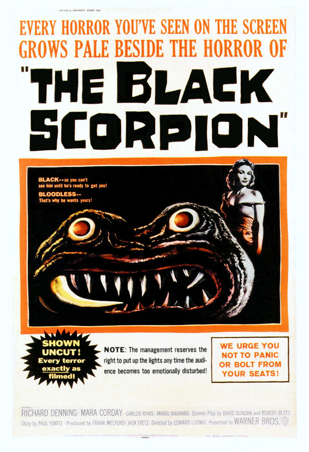 1950s Poster Art Photograph - The Black Scorpion, Right Mara Corday by Everett