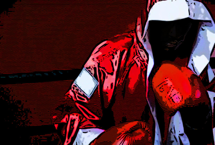 Active Digital Art - The Boxer by Rpics Rpics