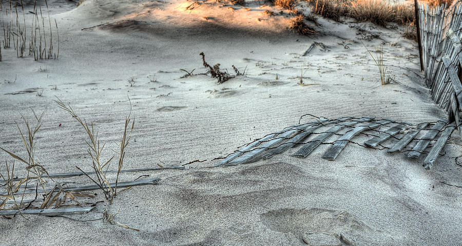 Sand Dune Photograph - The Bright Spot by JC Findley