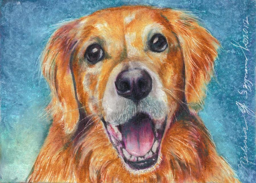 Golden Retriever Drawing - the Butter dog by Melissa J Szymanski