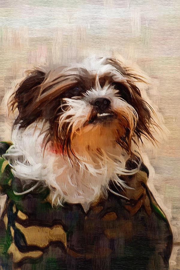 Camo Photograph - The Camo Makes The Dog by Kathy Clark
