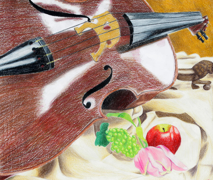 Cello Drawing - The Cello by Kayla Nicole