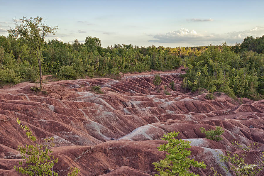 Caledon Ontario Photograph - The Cheltenham Badlands by Phill Doherty