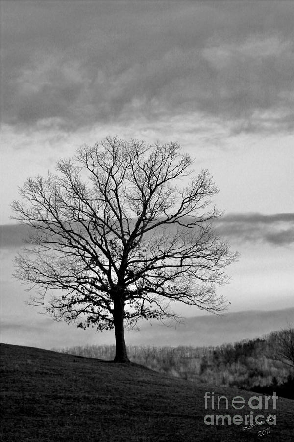 Digital Photograph Photograph - The Coming Storm by Laurinda Bowling