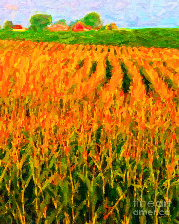 Landscape Photograph - The Cornfield by Wingsdomain Art and Photography