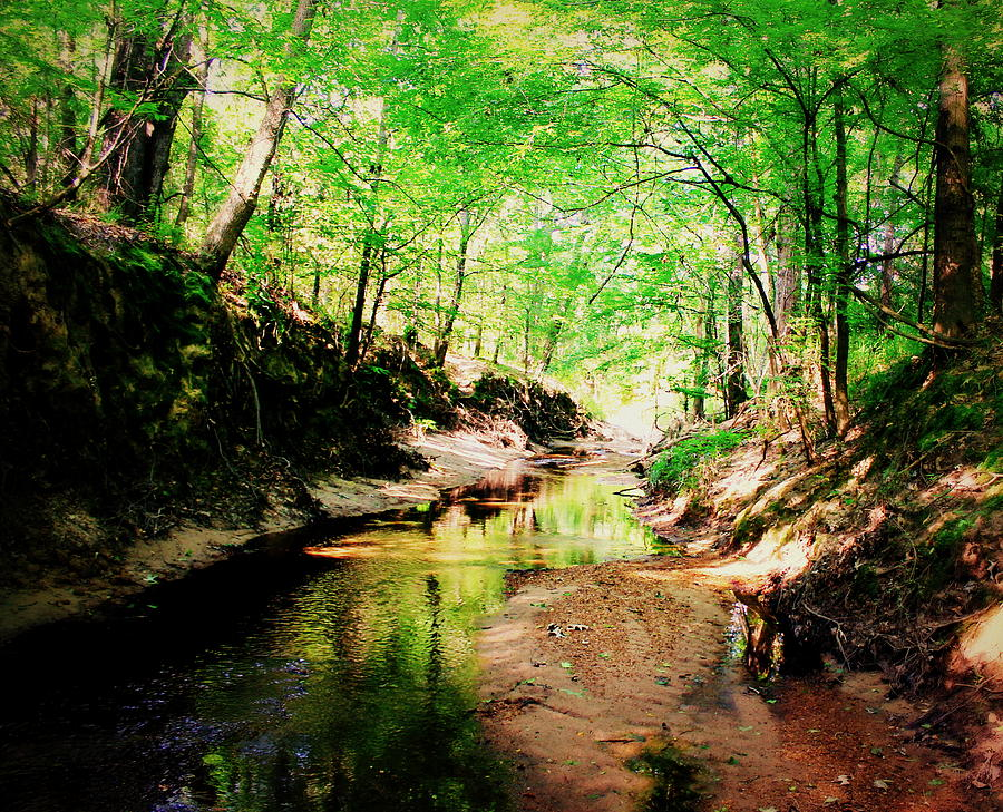 Creek Photograph - The Creek 1 by Hannah Miller