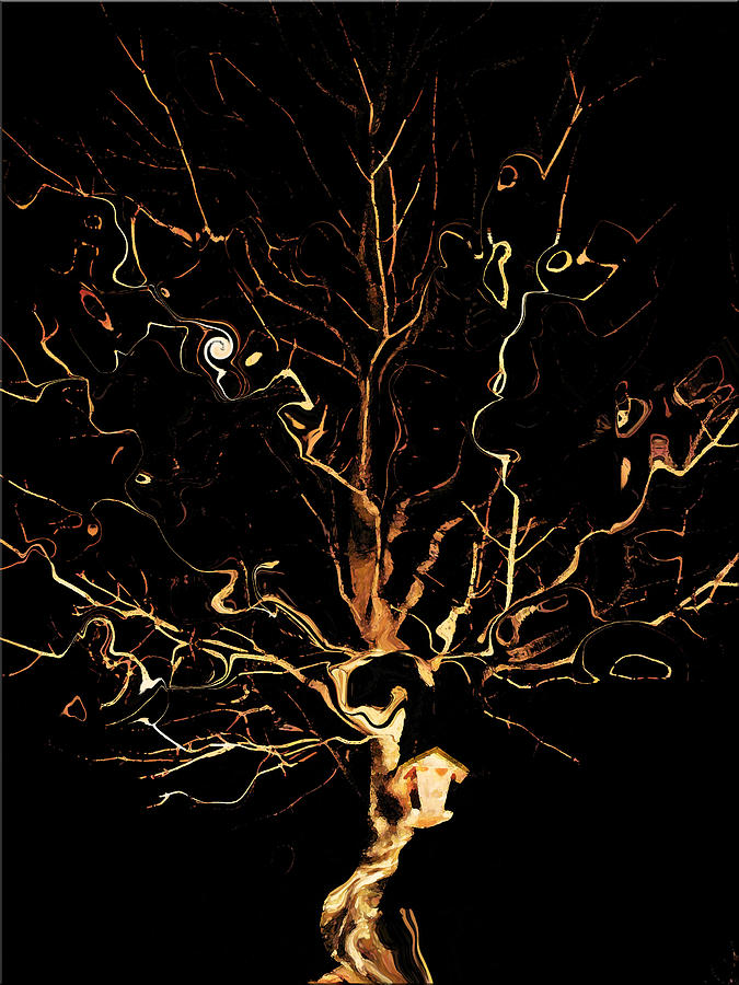 Tree Digital Art - The Curious Tree by Yvonne Scott