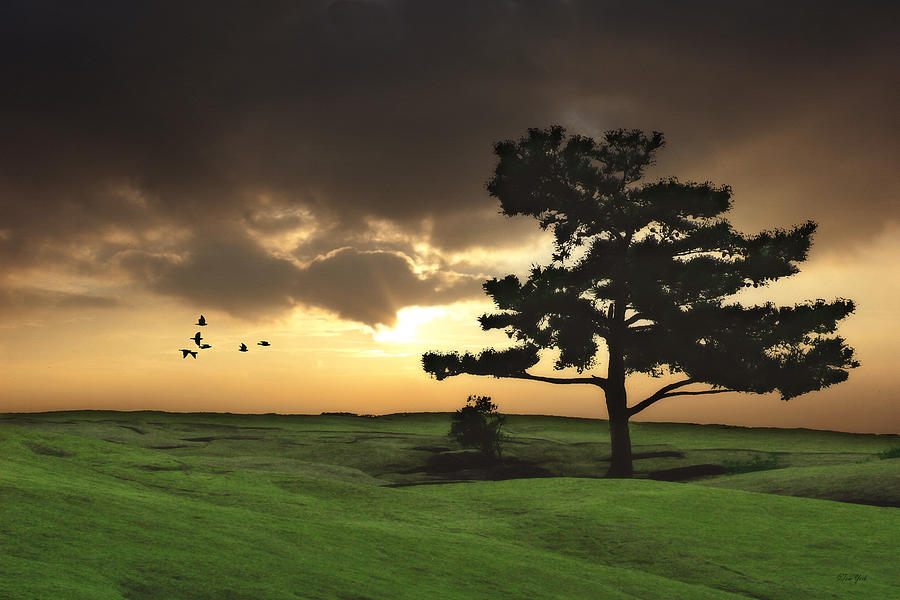 Landscape Photograph - The Day Is Done by Tom York Images