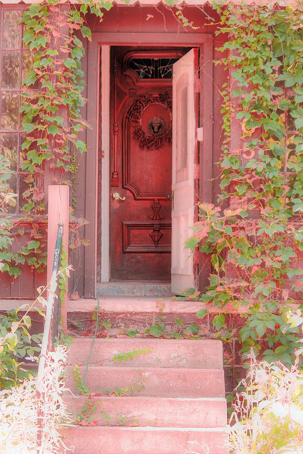 Antique Door Photograph - The Door by Angie Phillips