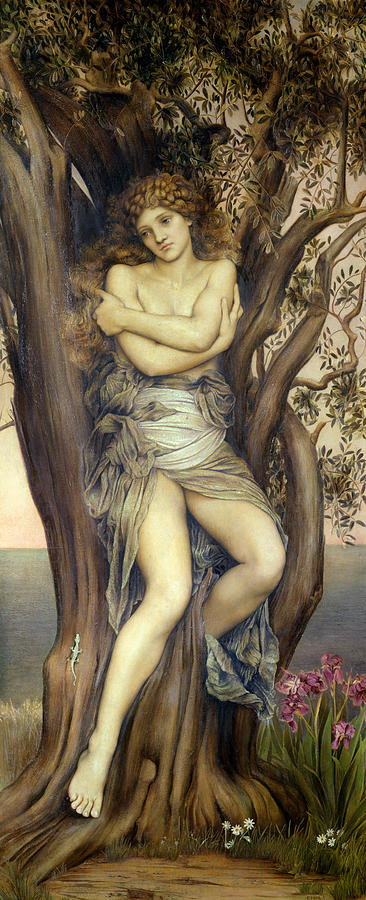Tree Painting - The Dryad by Evelyn De Morgan