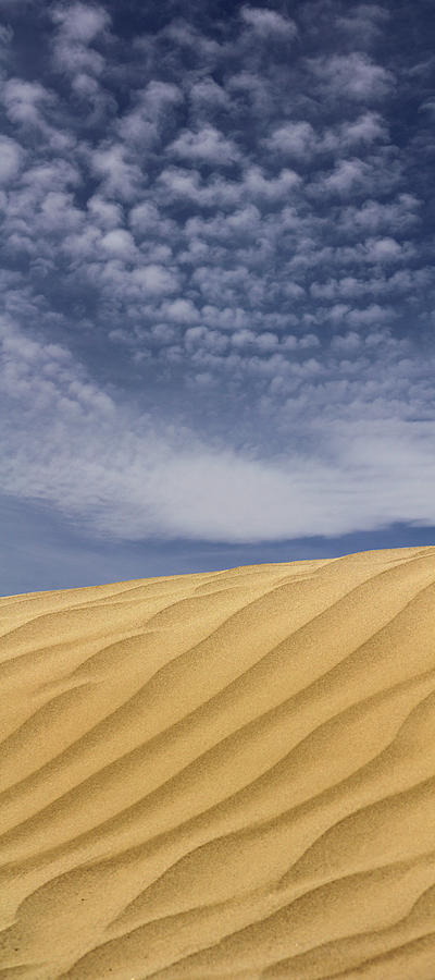 Sand Dune Photograph - The Dunes 2 by Mike McGlothlen