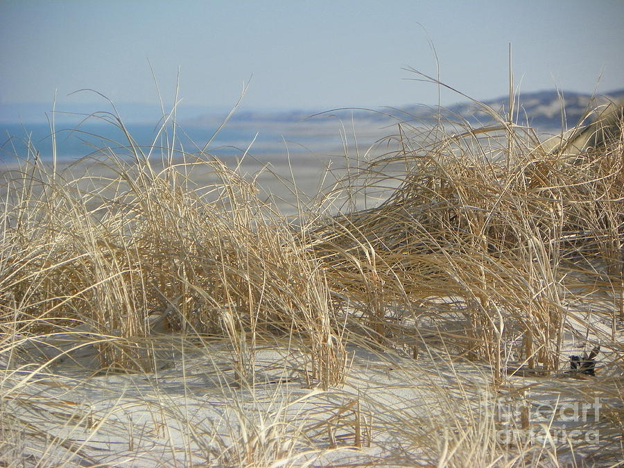 The Dunes Photograph by John Doble
