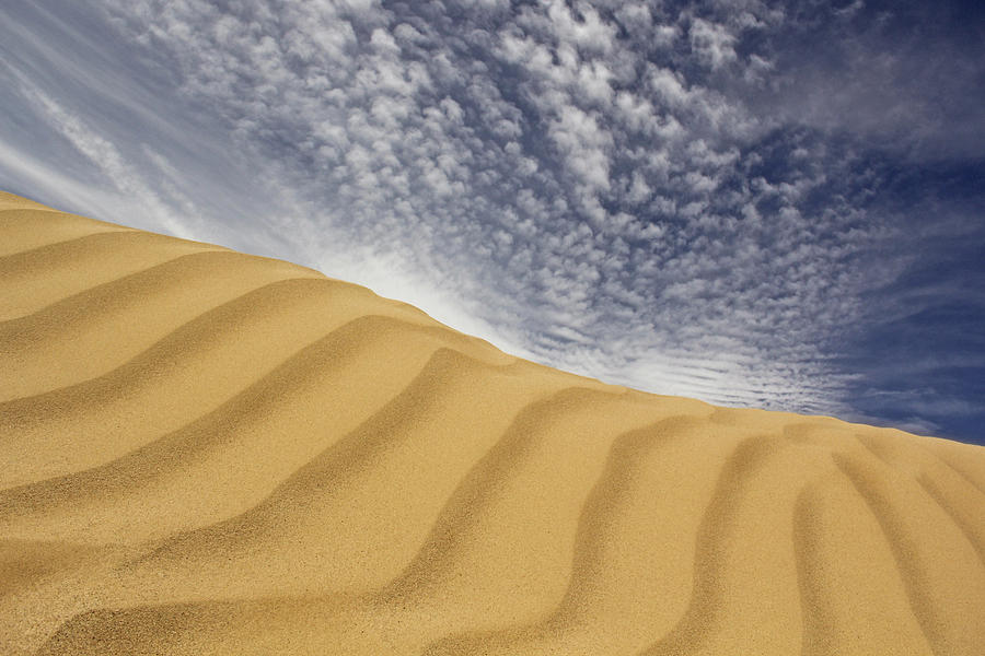 Sand Dune Photograph - The Dunes by Mike McGlothlen