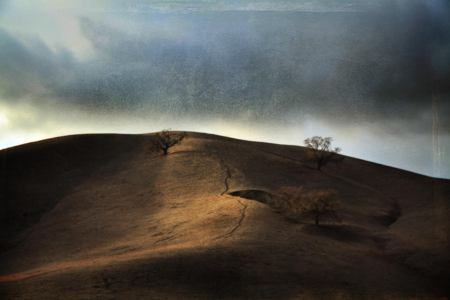 Landscape Photograph - The Earth Moved When You Loved Me by Laurie Search