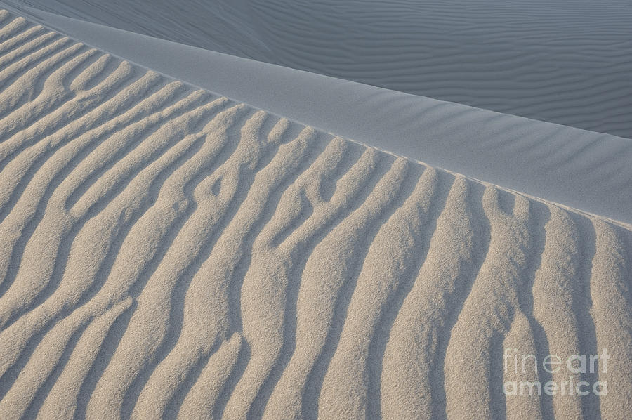 Sand Photograph - The Edge Of Sand by Ron Hoggard