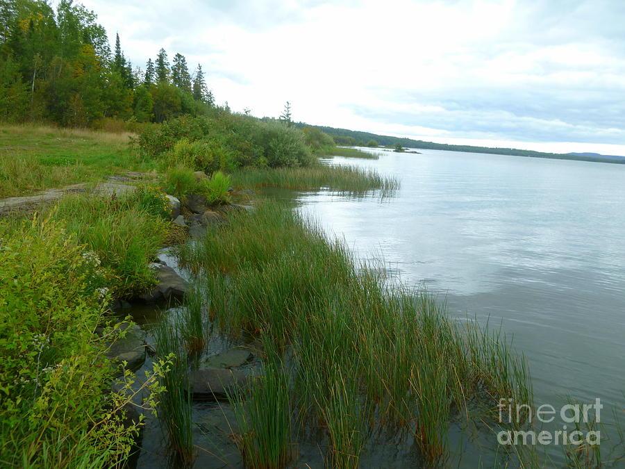 Whitefish Lake Photograph - The Edge Of The Lake by Art Studio