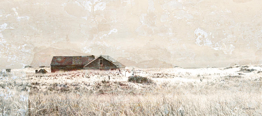 Field Photograph - The Effects Of Time by Michelle Wiarda