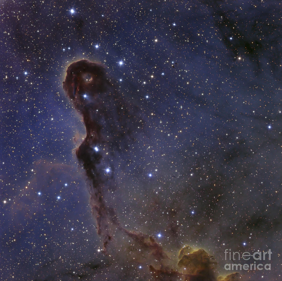 Ic 1396 Photograph - The Elephants Trunk Nebula In The Star by Ken Crawford