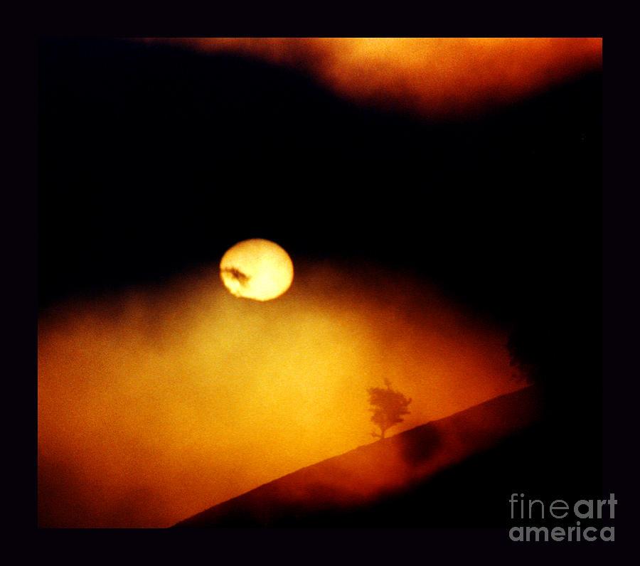 Sun Photograph - The End Of Reason by Susanne Still