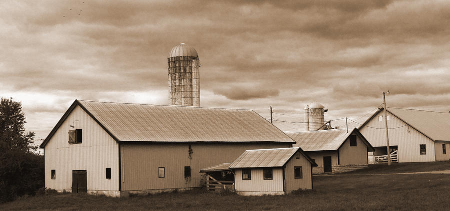 Farm Photograph - The Farm by Barry Jones