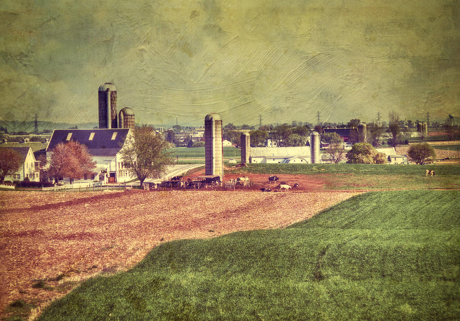 Amish Photograph - The Farm In Lancaster by Kathy Jennings
