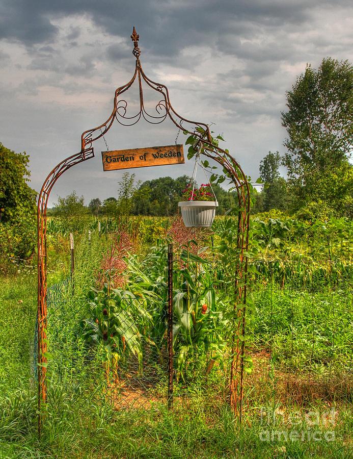 Hdr Photograph - The Garden Of Weeden by Robert Pearson
