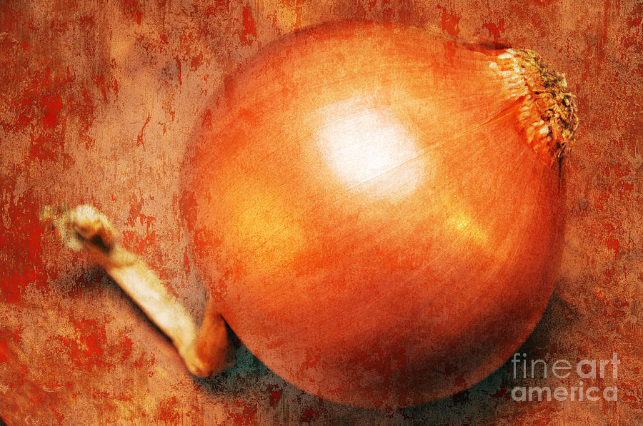Brown Photograph - The Golden Onion by Andee Design
