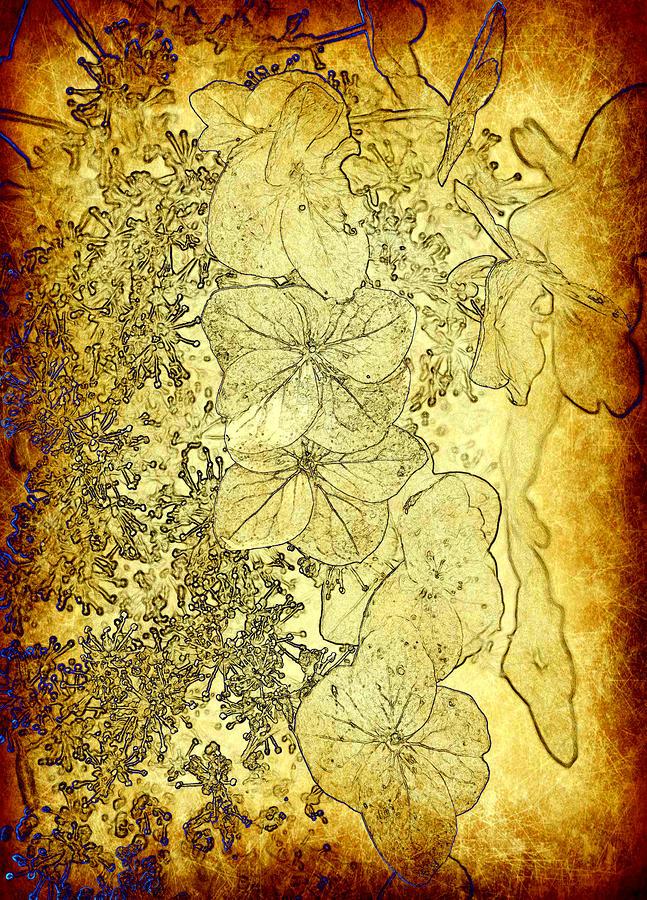 Flowers Photograph - The Golden Pedals by Taylor Steffen SCOTT
