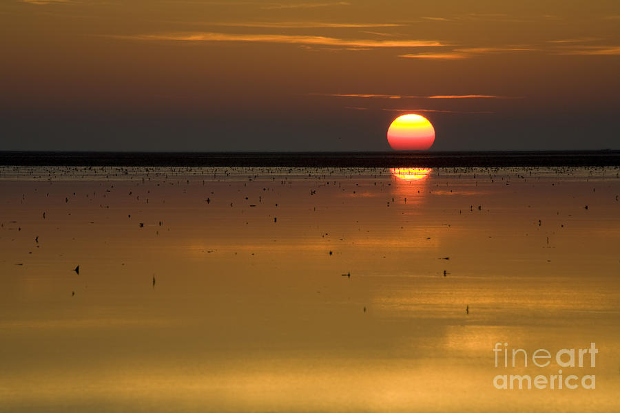 The Golden Sunset At The Northsea Photograph