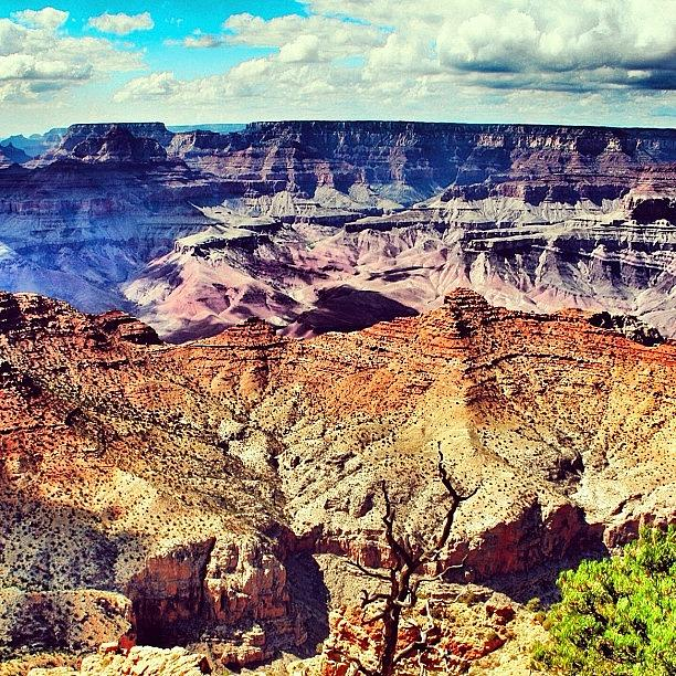 The Grand Canyon - Arizona Photograph by Luisa Azzolini