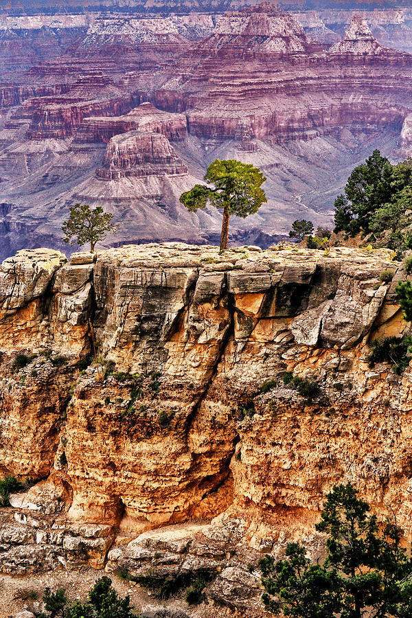 Arizona.the Grand Canyon Photograph - The Grand Canyon Iv by Tom Prendergast