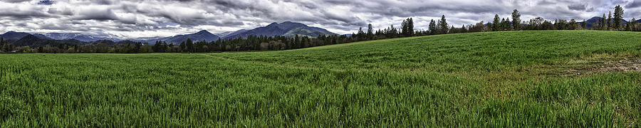 Hdr Photograph - The Green Across by Nathaniel Kolby