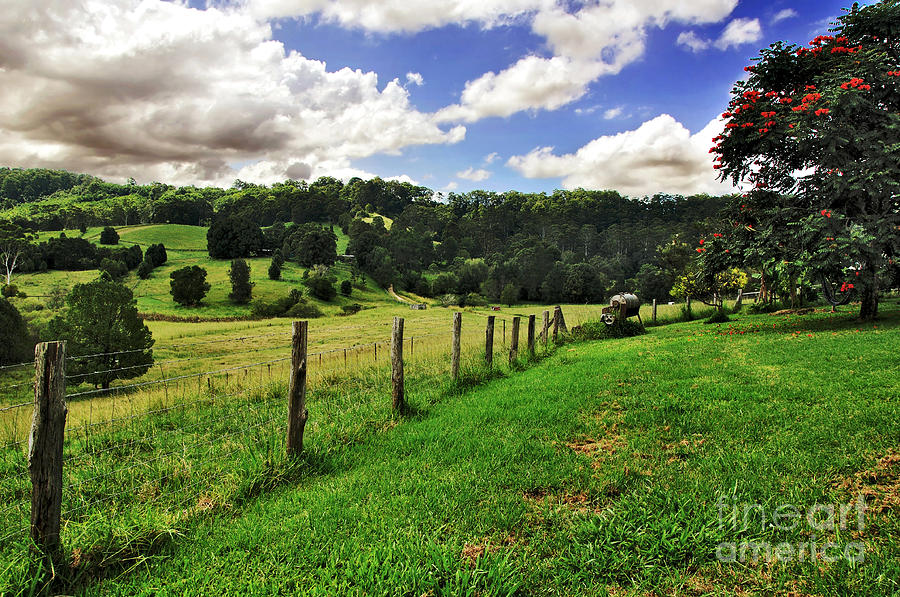 Rural Landscape Photograph - The Green Green Grass Of Home by Kaye Menner