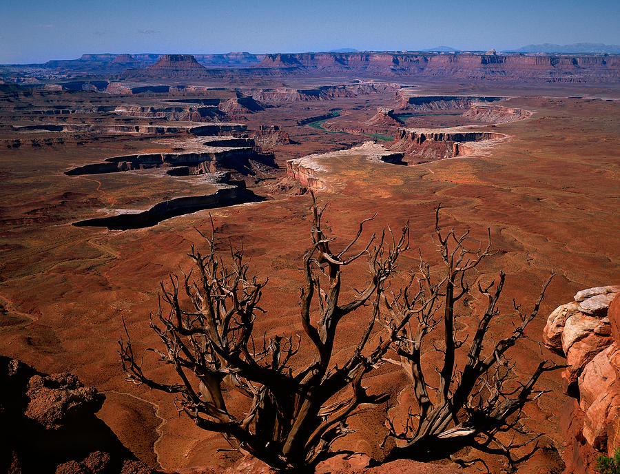Daniel Digital Art - The Green River Over Look Canyonland National Park by Daniel Chui