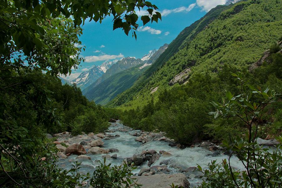 Landscape Photograph - The Green Valley by Olga Vlasenko
