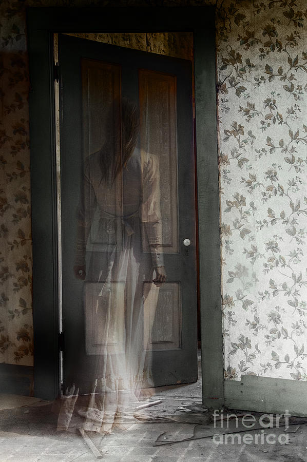 The Haunting Photograph by Margie Hurwich