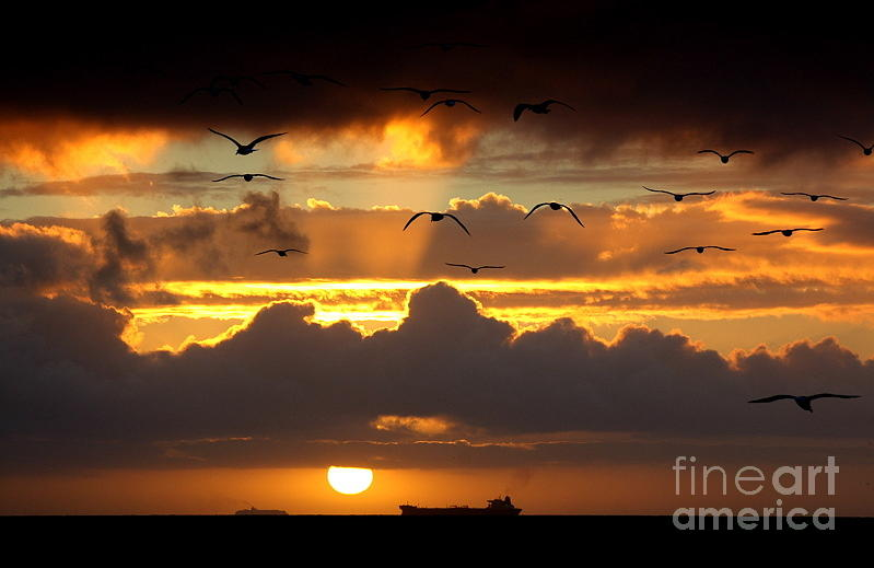 Sunset Photograph - The Heavens by Johanne Peale