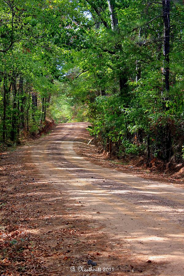 Landscape Photograph - The High Road by Betty Northcutt