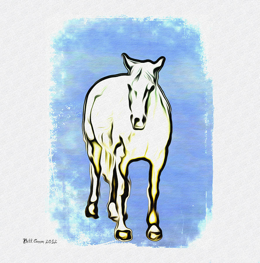 The Horse Photograph - The Horse by Bill Cannon