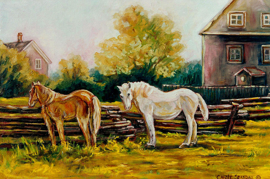 Horses Painting - The Horse Ranch Eastern Townships Quebec by Carole Spandau