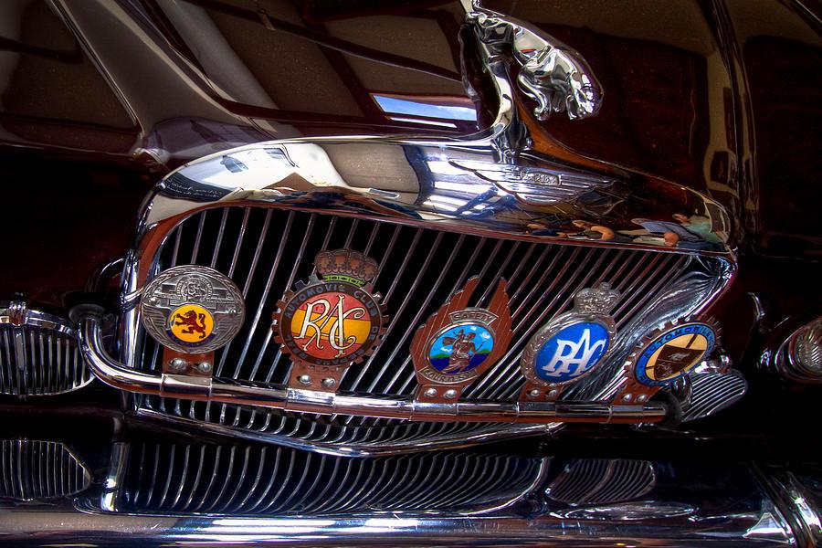 Jaguar Photograph - The Jaguar by David Patterson